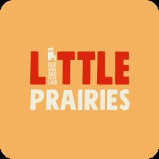 Little Prairies